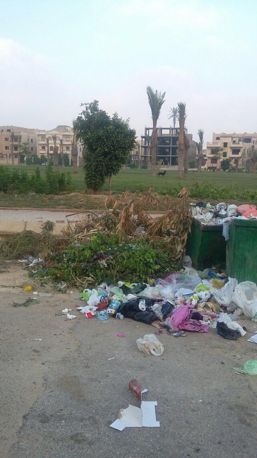 صور.. تفاقم أزمة القمامة بالتجمع الأول في القاهرة الجديدة