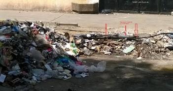 بالصور.. إشغالات في شارع بحدائق الزيتون.. واتهامات للحي بإزالة أشجار وتحويلها لمقلب قمامة