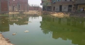 قرية «المنير» بالشرقية تعاني نقص خدمات الصرف الصحي والتعليم والصحة