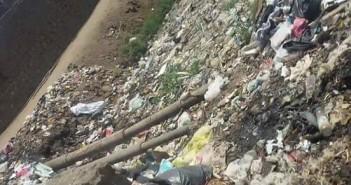 تراكم القمامة وانتشار الحشرات الضارة بترعة كشمير في أبو زعبل