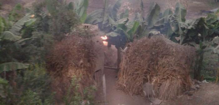 📷 سحب دخانية نتيجة حرق حطب الذرة في إحدى قرى الدقهلية
