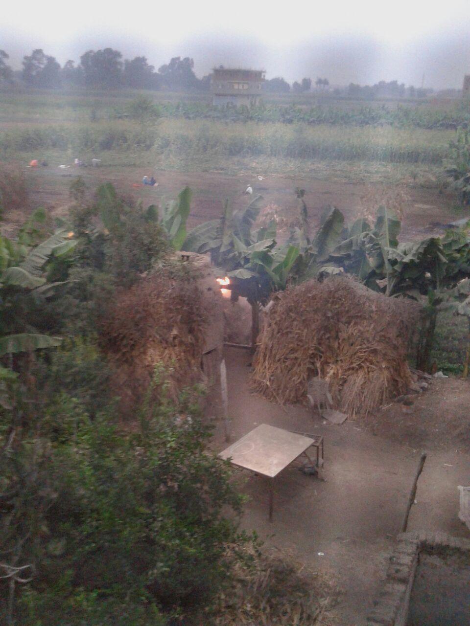 تصاعد دخان حرق حطب الذرة في إحدى قرى الدقهلية