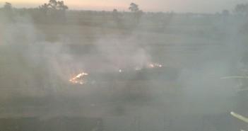 صور.. دخان حرق قش الأرز يغطي سماء «ديمشلت» بالدقهلية