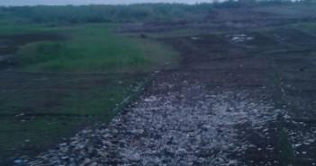 بالصور.. تراكم القمامة على ضفاف نهر النيل في أسيوط