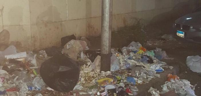 بالصور.. تراكم القمامة بشارع فريد شوقي قرب المستشفى العسكري بالعجوزة 📷