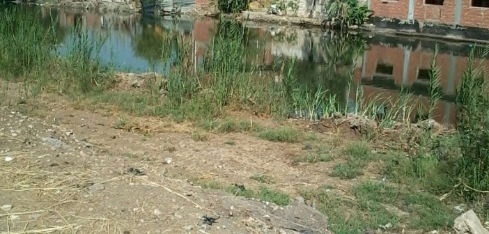 📷 تعديات على الأراضي الزراعية وترعة بإحدى قرى الغربية
