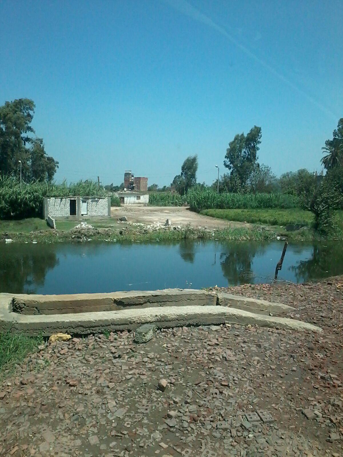تعديات على الأراضي الزراعية وترعة بإحدى قرى الغربية