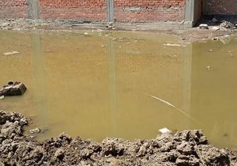 📷 غرق بيوت وشوارع عزبة بالدقهلية.. ومواطن: لا يوجد صرف صحي