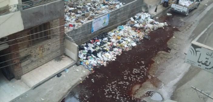 📷 دماء الأضاحي والقمامة تملأ شوارع في المنصورة