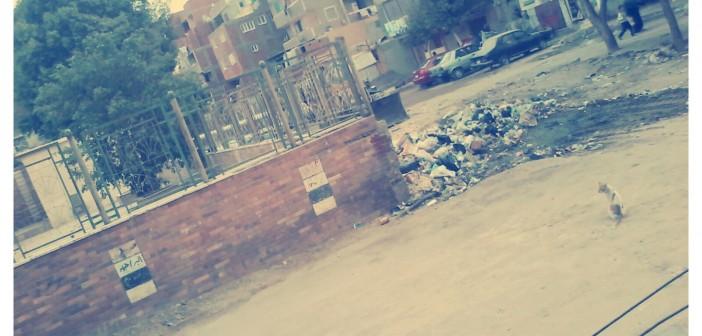 📷 مواطن: عمال نظافة بحلوان نقلوا صندوق قمامة لشارع رئيسي لأن «بيعدي منه»