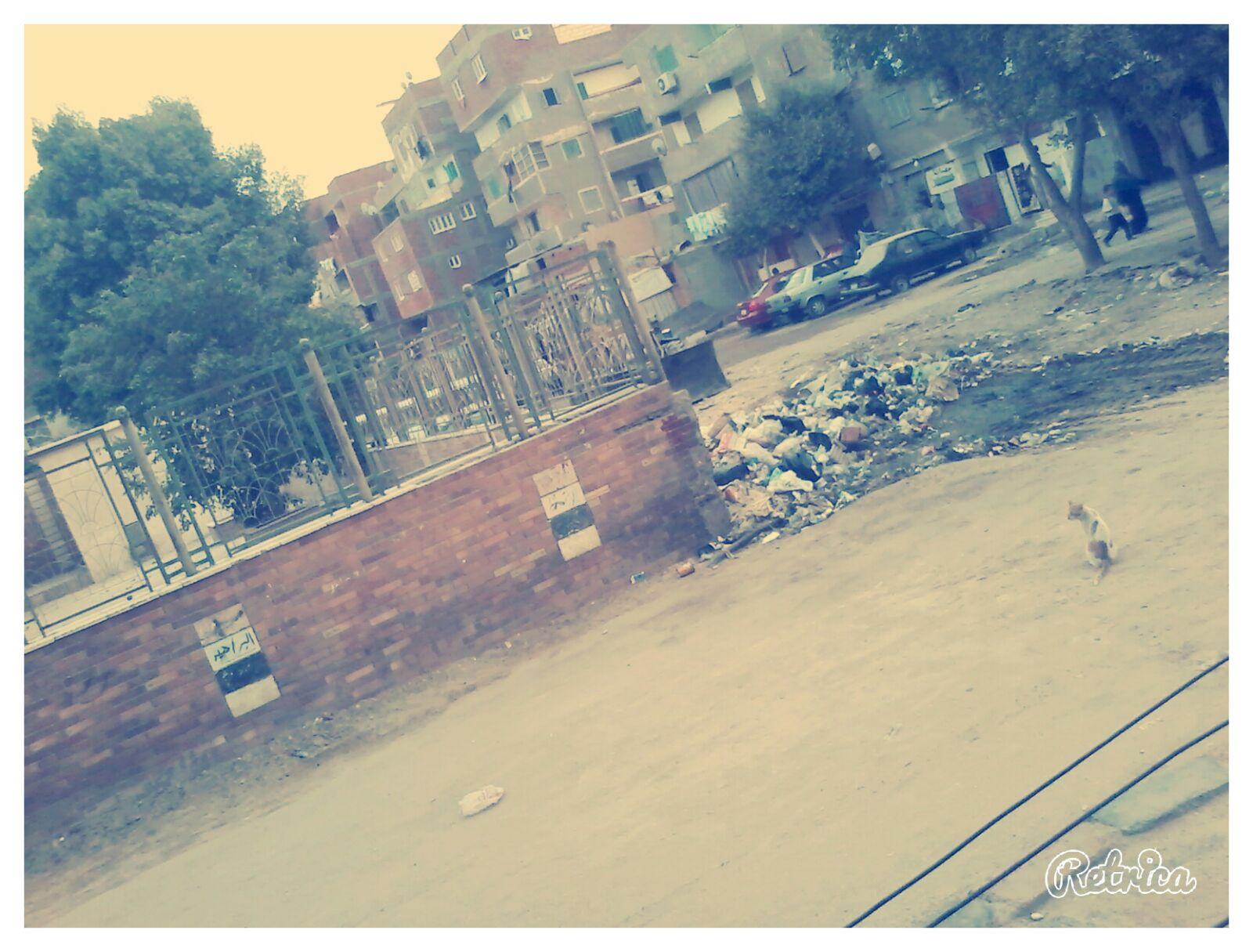 بالصور.. مواطن: عمال نظافة في حلوان نقلوا صندوق قمامة لشارع رئيسي