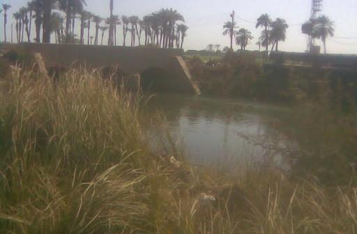 «عرب مطير» بأسيوط.. نقص مياه الري وضعف الخدمات الصحية والصرف