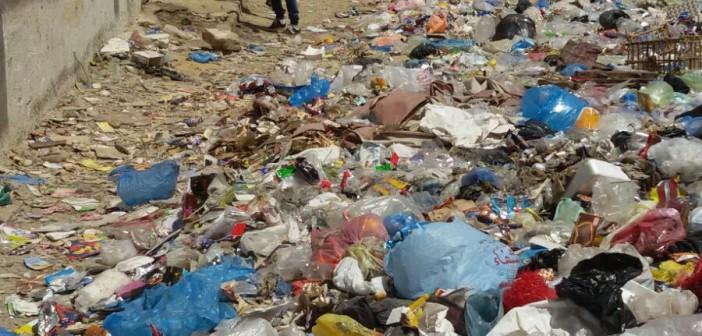 📷 مواطنة: القمامة تتراكم في شارعي بالإسكندرية.. ومخدرات بعمارتي