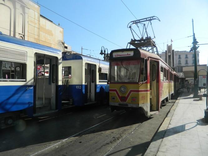 DSCN5445