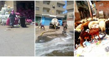 كفر الزيات.. خراف تأكل قمامة.. ونفايات طبية خطرة بالشارع.. والمدينة ترمي الصرف بالطريق