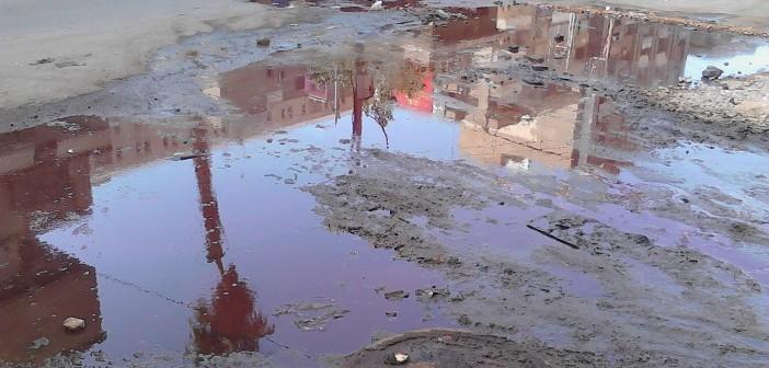 📷 دماء الأضاحي تُغرق طنطا رغم قرارات حظر ذبحها في الشوارع
