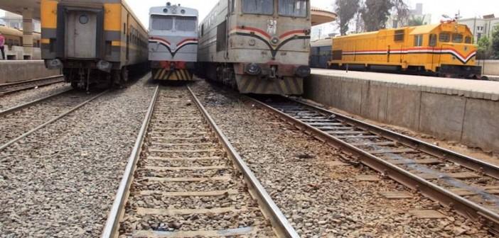 بالصور.. مُشرف قطارات بضائع لوزير النقل: حيوانات نافقة بـ«السبنسة» تصيبنا بالأمراض 📷