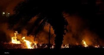 حرائق القش والخوص مستمرة في قرى أسيوط.. وإصابة مواطنين بالاختناق