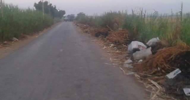 أهالي «رأس الخليج» في شربين يطالبون بإنارة طريق القرية 📷