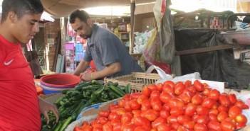 شباب في سوهاج يطلقون «بلاها طماطم» احتجاجًا على غلاء أسعارها