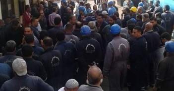 تواصل اعتصام عمال «الشركة البورسعيدية» للمطالبة بضمها إلى هيئة قناة السويس