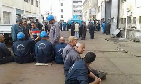 اعتصام عمال بـ«الشركات السبع» لقناة السويس يدخل يومه الثاني