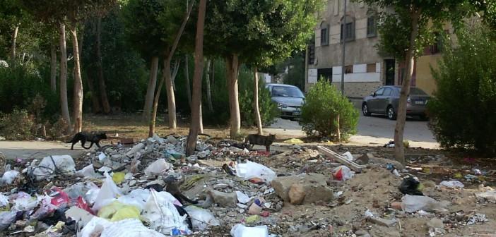 سكان «الشروق» يدشنون حملة لحث جهاز المدينة على رفع القمامة