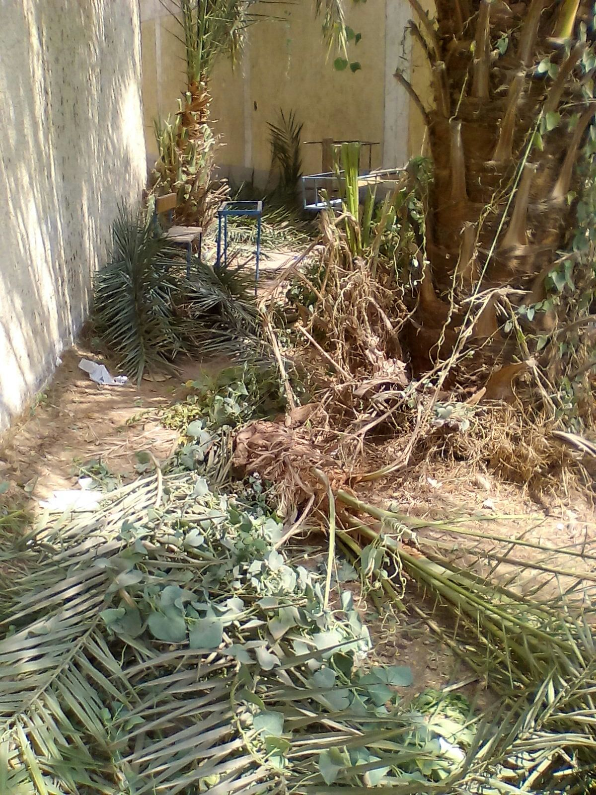 بالصور.. ولي أمر طالب يرصد مشاهد إهمال بالمدرسة التجريبية في القناطر.. (شاركونا صوركم)