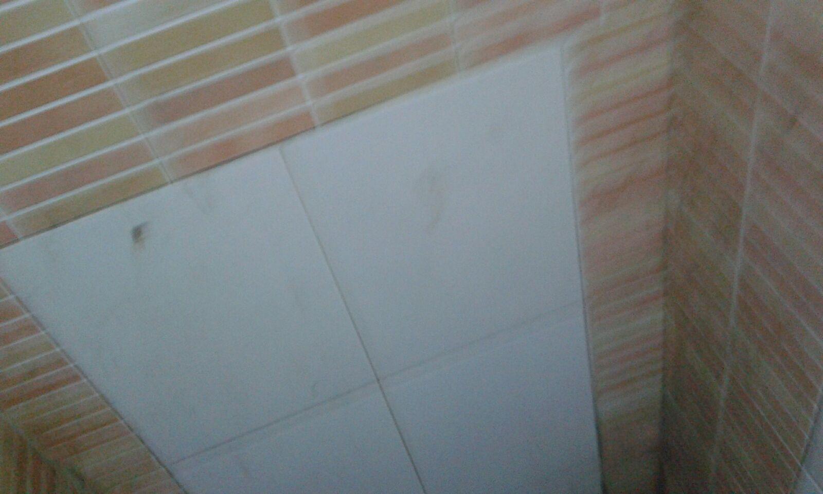بالصور.. حمام رمسيس العمومي «غُرزة» للمدمنين