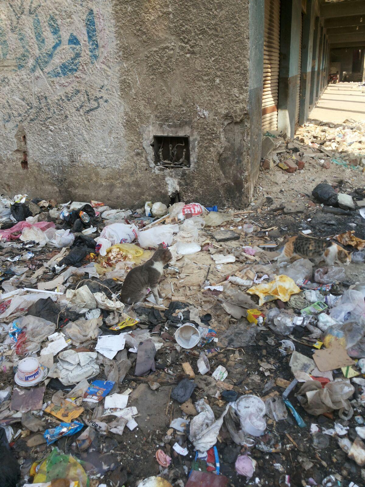 نقاط توزيع الكهرباء في مدينة السلام «مكشوفة».. والأطفال عرضة للصعق