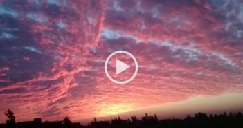 فيديو.. لحظة الغروب في «تفتيش السرو» بدمياط