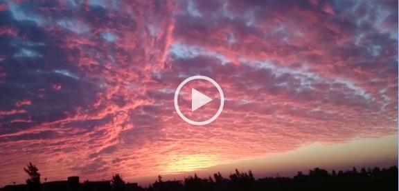▶| فيديو رائع.. لحظة غروب الشمس في «تفتيش السرو» بدمياط