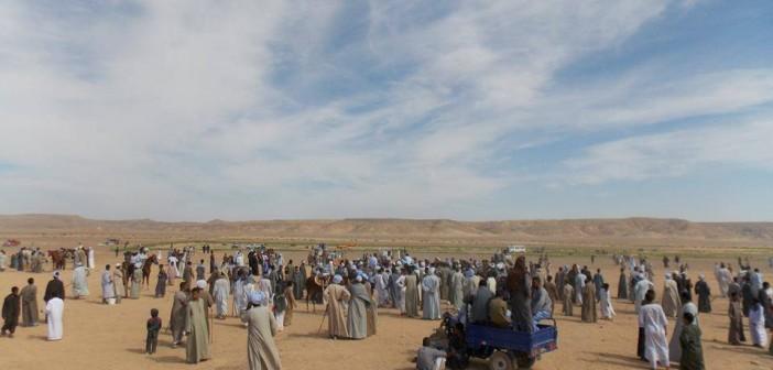 📷  بالصور.. مهرجان سباق الخيل السنوي في قرية سلوا بأسوان