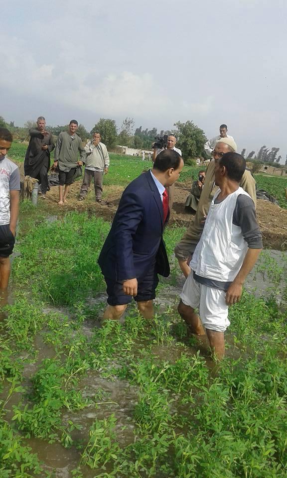 فلاحون: غرق 500 فدان على فرع رشيد.. وارتفاع منسوبها جعلها غير صالحة للزراعة لسنوات