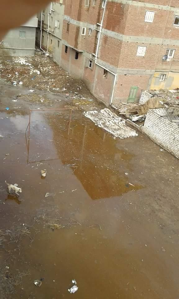 شلل تام بإحدى قرى الغربية بعد غرقها في مياه الأمطار