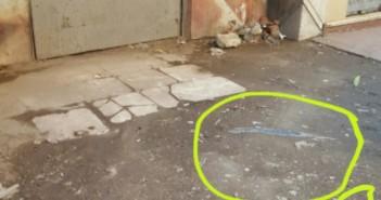 كابلات كهرباء يتم رشها بالمياه تهدد حياة المواطنين في الهرم