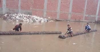 📷| في البحيرة.. أطفال يركبون جذوع النخل.. ويجدفون في مياه الأمطار