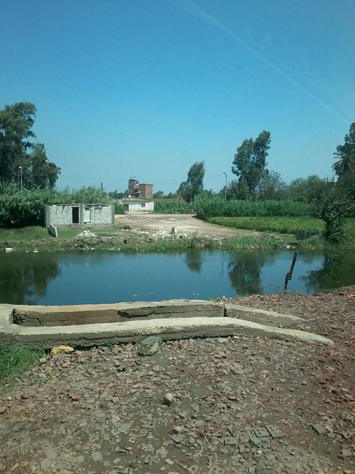 تعديات على القنوات المائية والأراضي الزراعية في «ميت ميمون» بالسنطة