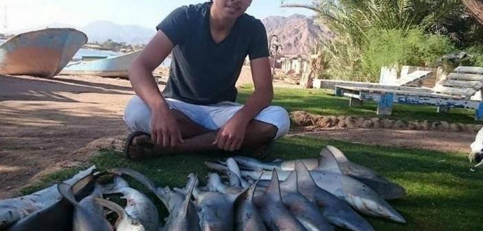 بالصور.. عمليات صيد لصغار أسماك القرش في دهب بجنوب سيناء 📷