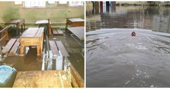 غرق مدرسة في البحيرة (حوش عيسى)