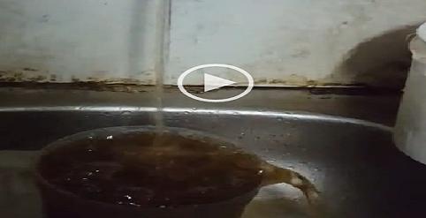 ▶| بالفيديو.. مواطنون: اختلاط مياه الشرب بالصرف في الوراق بالجيزة