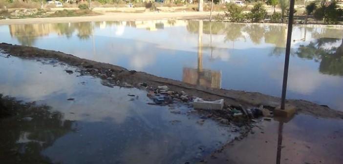 📷| طفح الصرف يمنع تلاميذ من الوصول لمدارسهم بالإسكندرية