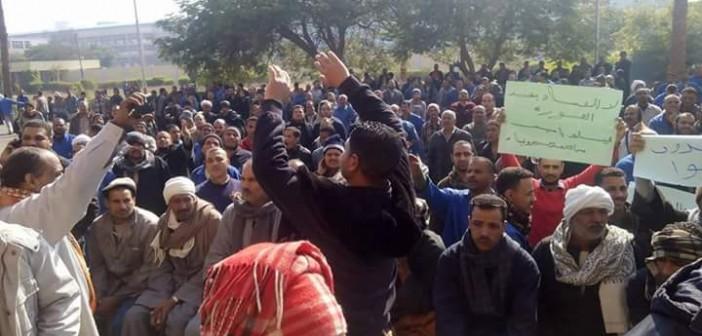 بالصور.. تواصل اعتصام ألومنيوم نجع حمادي.. والعمال يهددون بإضراب تام