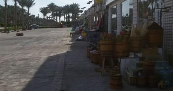 منظم رحلات سفاري بشرم الشيخ: بدون سائحين في عز الموسم