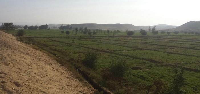 📷  الأرض لو عطشانة.. «الري» تقرر قطع المياه عن 150 فدانا مُستصلحًا بالمنيا (صور)