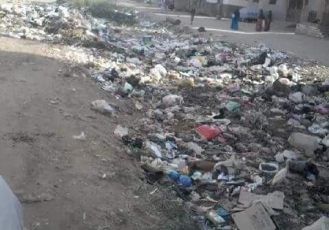 بالصور.. زاوية دهشور تعاني من رشاح الصرف.. والأهالي: الثعابين تهدد حياتنا