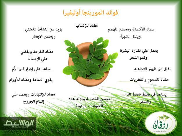 شاي-المورينجا-للتخسيس-بالكويت-170857-3-1417522695