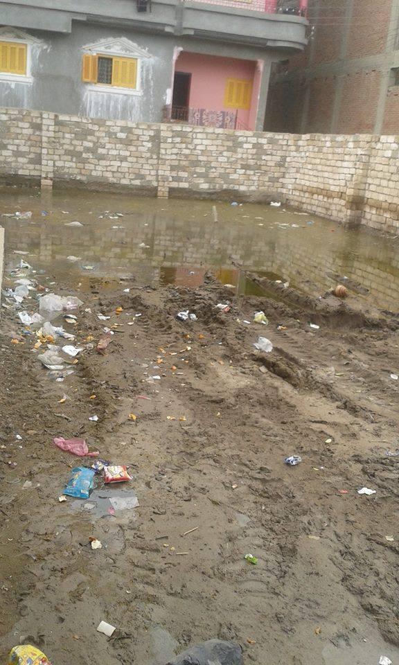 الصرف يخترق بيوت في «صناديد» بالغربية.. وبرك للمياه أمام مدرسة