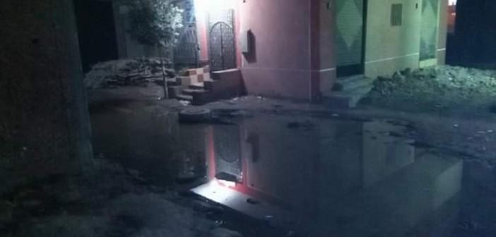 بالصور.. غرق عزبتي «رضوان والنحاس» بالقليوبية في المجاري