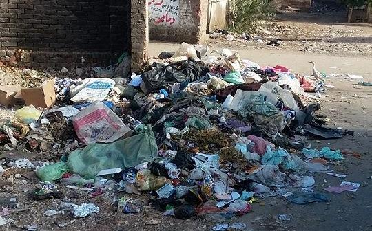 تراكم القمامة في شوارع «أخطاب» بالدقهلية